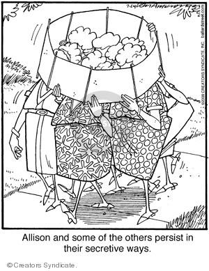 Comic Strip Jerry Van Amerongen  Ballard Street 2008-07-24 Allison
