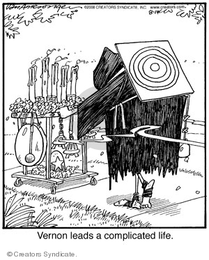 Comic Strip Jerry Van Amerongen  Ballard Street 2008-08-14 choice
