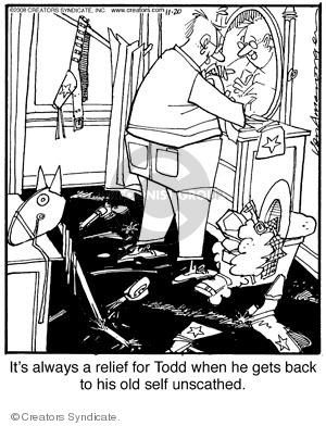 Comic Strip Jerry Van Amerongen  Ballard Street 2008-11-20 Todd