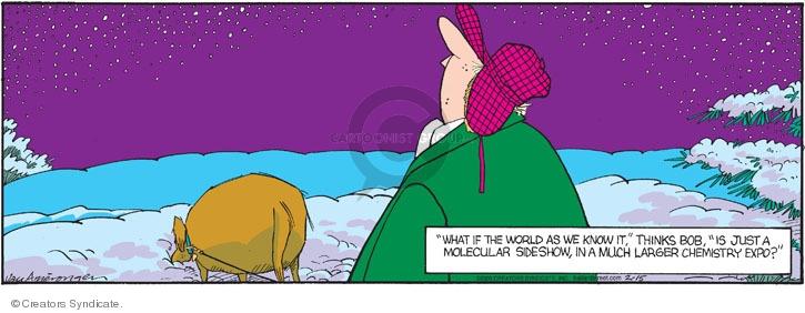 Comic Strip Jerry Van Amerongen  Ballard Street 2009-02-15 philosophy