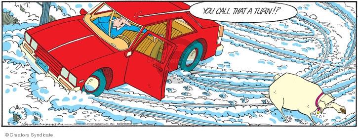 Comic Strip Jerry Van Amerongen  Ballard Street 2009-03-15 dog