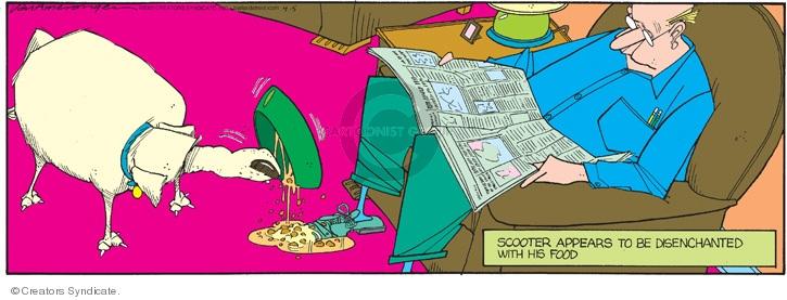 Comic Strip Jerry Van Amerongen  Ballard Street 2009-04-05 dog