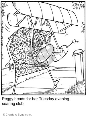 Cartoonist Jerry Van Amerongen  Ballard Street 2009-04-28 hobby