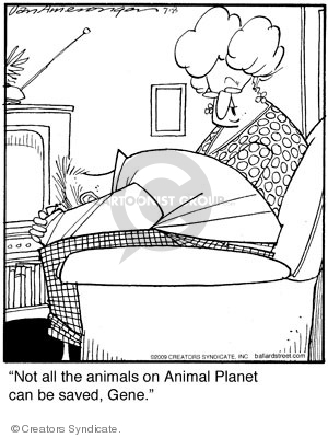 Not all the animals on Animals Planet can be saved, Gene.