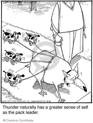 Comic Strip Jerry Van Amerongen  Ballard Street 2009-11-16 dog toy