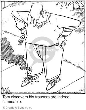Comic Strip Jerry Van Amerongen  Ballard Street 2009-11-28 flammable