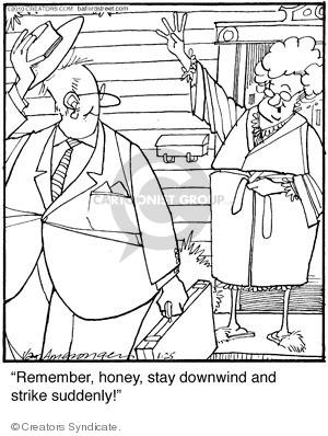 Comic Strip Jerry Van Amerongen  Ballard Street 2010-01-25 remember