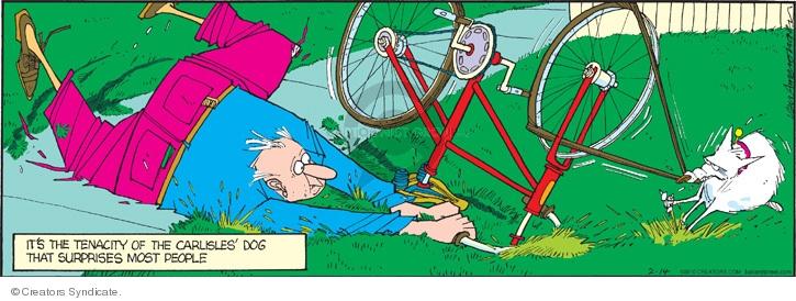 Comic Strip Jerry Van Amerongen  Ballard Street 2010-02-14 bicycle