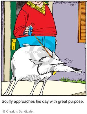 Comic Strip Jerry Van Amerongen  Ballard Street 2010-12-31 scuffy