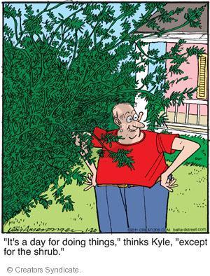 Comic Strip Jerry Van Amerongen  Ballard Street 2011-01-20 Kyle
