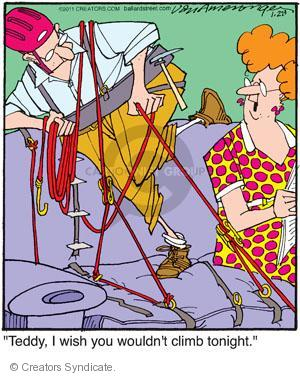 Comic Strip Jerry Van Amerongen  Ballard Street 2011-01-28 teddy