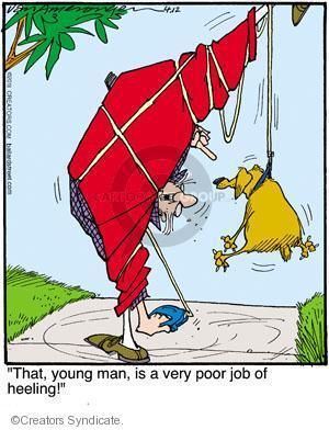 Cartoonist Jerry Van Amerongen  Ballard Street 2011-04-12 dog training