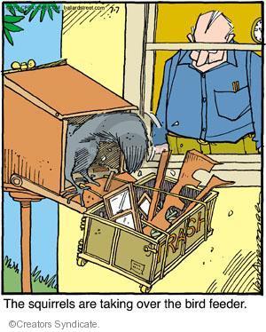 Comic Strip Jerry Van Amerongen  Ballard Street 2011-07-07 wildlife