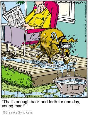 Comic Strip Jerry Van Amerongen  Ballard Street 2011-08-15 young