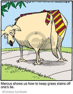 Comic Strip Jerry Van Amerongen  Ballard Street 2011-08-31 clothing
