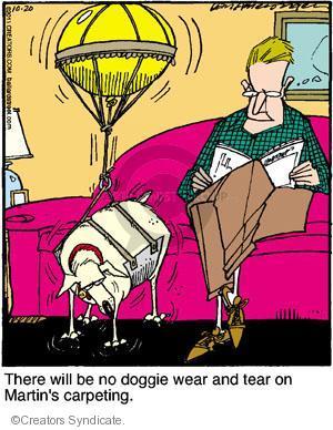 Cartoonist Jerry Van Amerongen  Ballard Street 2011-10-20 dog