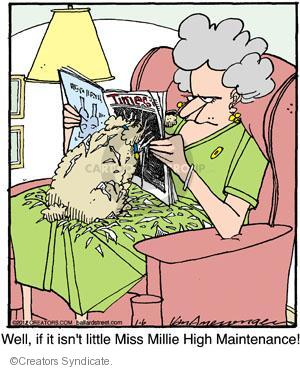 Comic Strip Jerry Van Amerongen  Ballard Street 2012-01-06 behavior