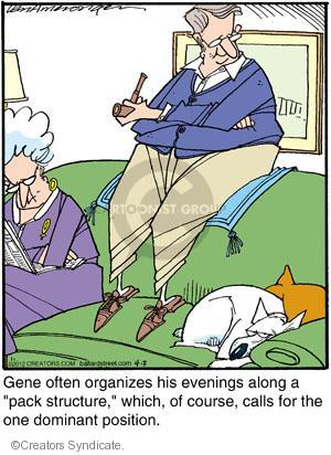 """Gene often organizes his evenings along a """"pack structure,"""" which, of course, calls for the one dominant position."""