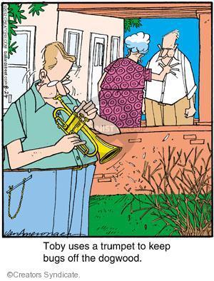 Comic Strip Jerry Van Amerongen  Ballard Street 2012-08-24 musical instrument