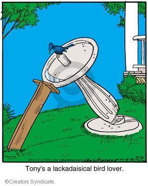 Comic Strip Jerry Van Amerongen  Ballard Street 2012-10-22 over
