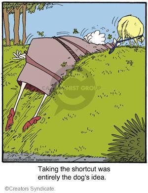 Comic Strip Jerry Van Amerongen  Ballard Street 2013-05-10 leash