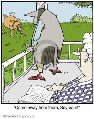 Cartoonist Jerry Van Amerongen  Ballard Street 2013-10-23 dog bark