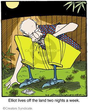 Comic Strip Jerry Van Amerongen  Ballard Street 2014-03-08 natural