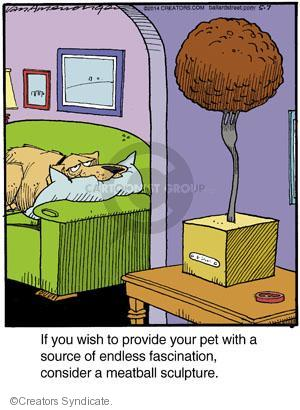 Cartoonist Jerry Van Amerongen  Ballard Street 2014-05-07 dog toy