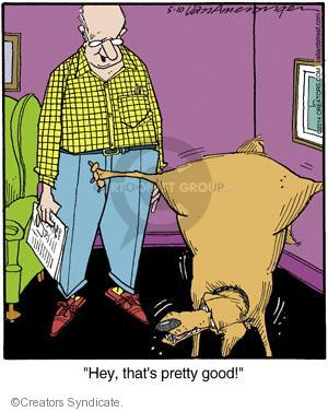 Comic Strip Jerry Van Amerongen  Ballard Street 2014-05-10 good dog