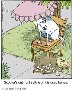 Comic Strip Jerry Van Amerongen  Ballard Street 2014-05-12 dog bone