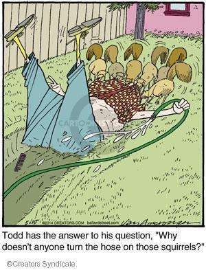Comic Strip Jerry Van Amerongen  Ballard Street 2014-05-15 Todd
