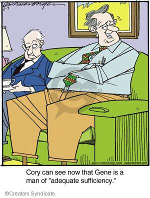 Comic Strip Jerry Van Amerongen  Ballard Street 2014-06-07 adequacy