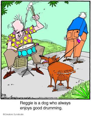 Reggie is a dog who always enjoys good drumming.