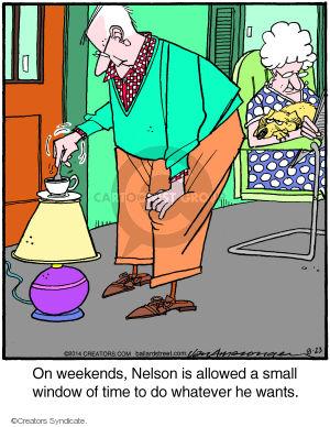 Cartoonist Jerry Van Amerongen  Ballard Street 2014-08-23 lamp