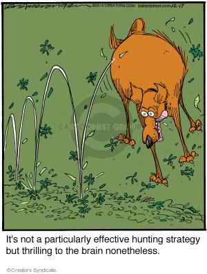 Comic Strip Jerry Van Amerongen  Ballard Street 2014-12-17 strategy