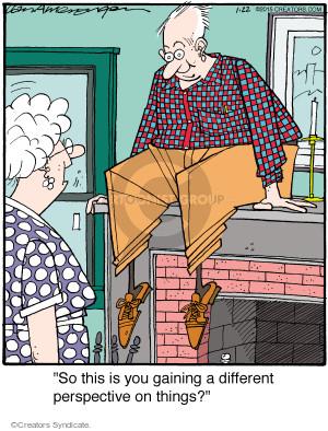 Comic Strip Jerry Van Amerongen  Ballard Street 2015-01-22 atop