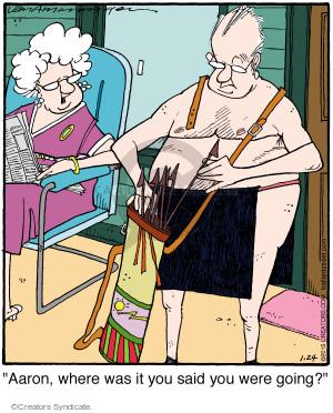 Comic Strip Jerry Van Amerongen  Ballard Street 2015-01-24 cloth