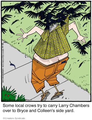 Comic Strip Jerry Van Amerongen  Ballard Street 2015-02-14 Larry