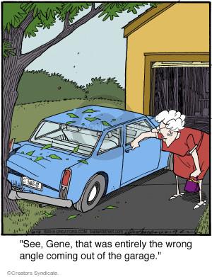 Cartoonist Jerry Van Amerongen  Ballard Street 2015-06-04 auto