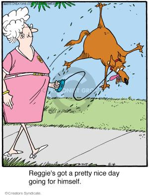 Comic Strip Jerry Van Amerongen  Ballard Street 2015-08-04 Reggie
