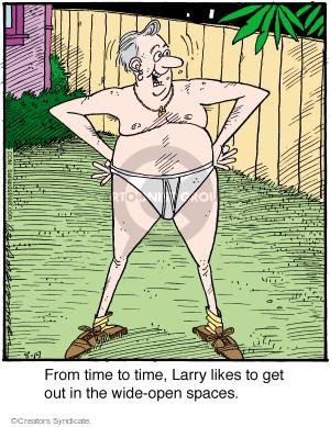 Comic Strip Jerry Van Amerongen  Ballard Street 2015-08-19 Larry