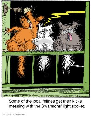Comic Strip Jerry Van Amerongen  Ballard Street 2015-08-25 stray cat