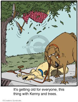 Comic Strip Jerry Van Amerongen  Ballard Street 2015-11-09 get old