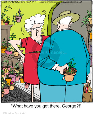 Comic Strip Jerry Van Amerongen  Ballard Street 2015-11-19 potted plant