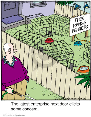 Comic Strip Jerry Van Amerongen  Ballard Street 2016-01-26 concern