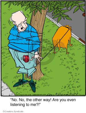 Comic Strip Jerry Van Amerongen  Ballard Street 2016-06-07 tree