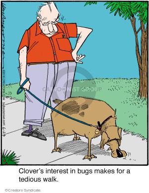 Comic Strip Jerry Van Amerongen  Ballard Street 2016-06-23 dog