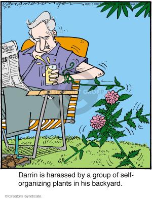 Cartoonist Jerry Van Amerongen  Ballard Street 2016-07-02 backyard
