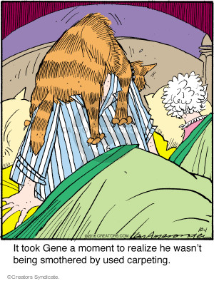 Comic Strip Jerry Van Amerongen  Ballard Street 2016-10-01 cat