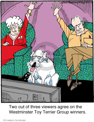 Cartoonist Jerry Van Amerongen  Ballard Street 2017-01-09 dog toy
